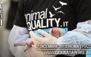 ANIMAL EQUALITY Celebra la Giornata Internazionale per i Diritti degli animali 2013 per commemorare ogni vittima animale dimenticata