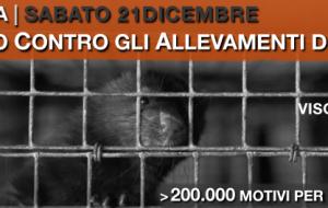 AVVISO. Visoni gettati nelle camere a gas dopo una vita rinchiusi in piccole gabbie, 200.000  uccisi negli allevamenti italiani