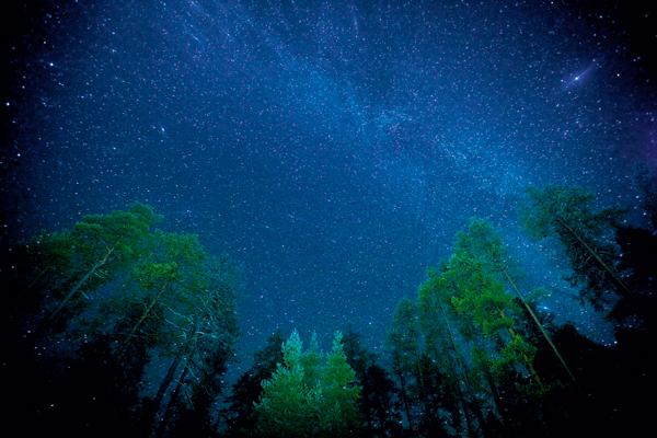 ©Peter Essick/National Geographic Notte stellata La Via Lattea vista dal Parco nazionale di Oulanka, in Finlandia