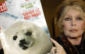 """Brigitte Bardot compie 80 anni: """"Riservo la mia saggezza e la mia esperienza agli animali"""" LaStampa.it"""