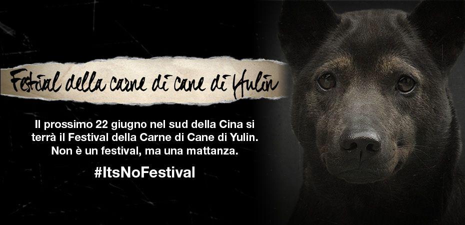 2015_Yulin_festival-eBanner_Websitefront_930x450-IT-2015.bf2915cc1beafb235f53cb77f89b2f3f
