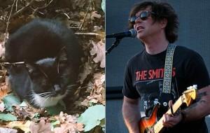Nuova Zelanda, la crociata del musicista Ryan Adams per salvare la gatta del cimitero Lastampa.it