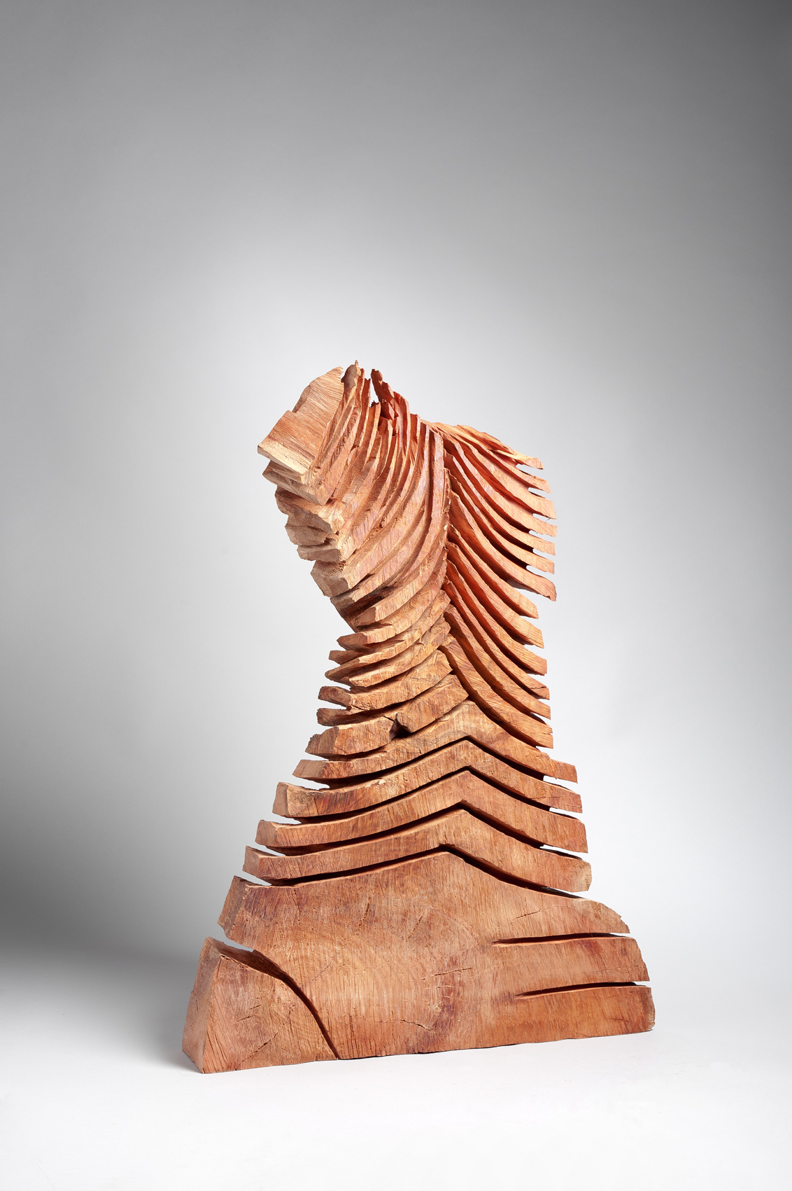 Red Cut Column 2011 Eucalyptus rouge 90x62x17 cm