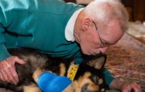 Un cane era pieno di metastasi, ma un uomo gli ha cambiato il destino  LaStampa.it