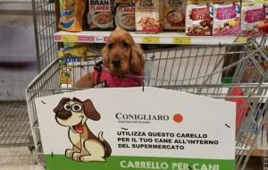 Palermo: arriva il carrello della spesa per cani