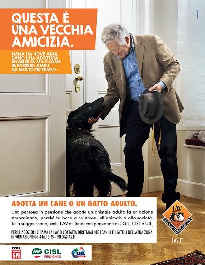 locandina adozioni cane - LAV - SINDACATI.jpg