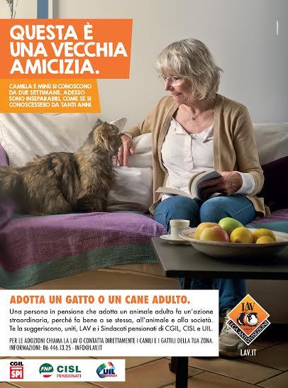 locandina adozioni gatto - LAV - sindacati.jpg