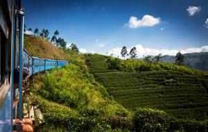 10 consigli per rendere il viaggio più green